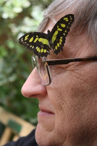 Wes and butterfly