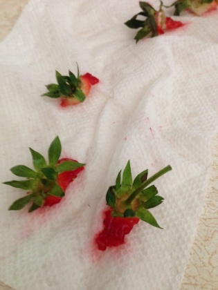 strawberry leavings