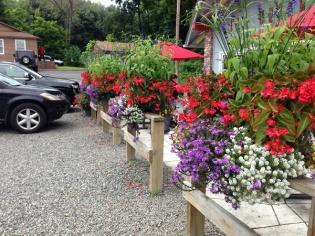 multiple flower boxes