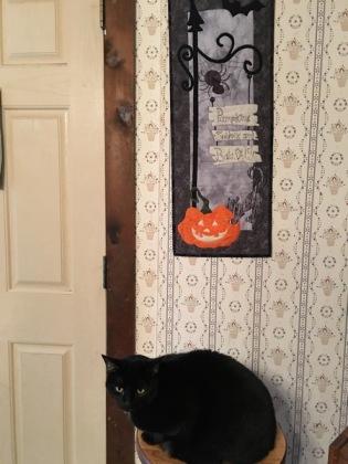 Maggie supervises