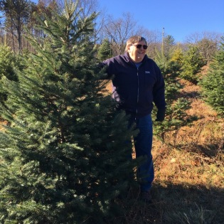 Wes supporting the tree