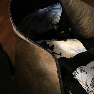 Maggie hides