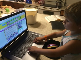 Playing Webkinz