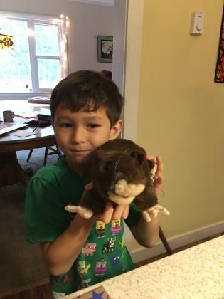 A rat puppet